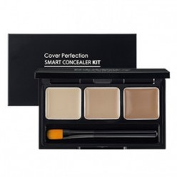 SAEM Cover Perfection Smart Concealer Kit 4.2g